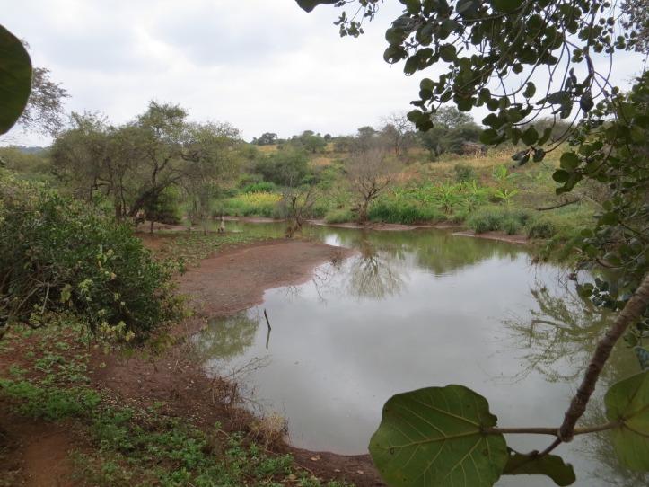 sand dam pond